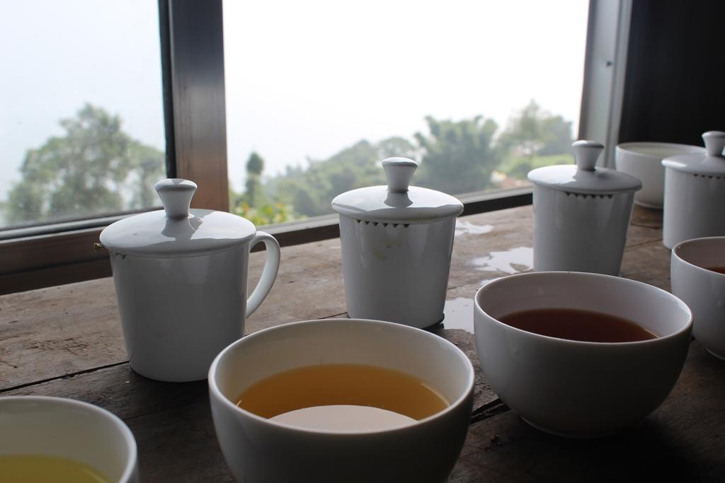 L'espace dédié aux Journées Internationales du thé en France